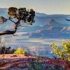 Obama Creates New National Monuments in Utah, Nevada