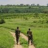 Environmental Crime Threatens Global Peace, Security
