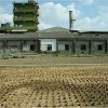 Taiwan's Illegal Factories Threaten Food Safety