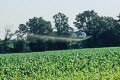 U.S. EPA Greenlights Pesticide Harmful to Children