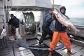 Feared Pebble Mine Again Threatens Bristol Bay Salmon