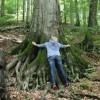 UNESCO World Heritage Panel Warns Poland on Logging