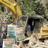 Oil Palm Loggers Must Stop Cutting Near National Park
