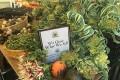 California Agencies Partner to Advance Carbon Farming