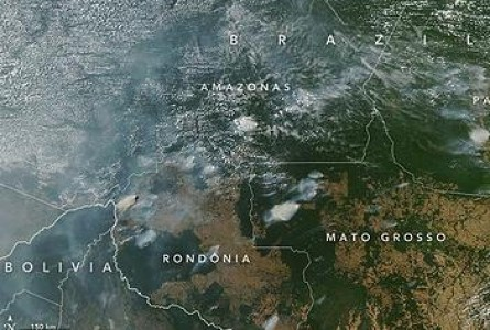 Fires Destroy Amazon Rainforest at Record Pace
