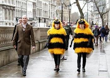 bee demonstrators