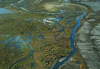 Bristol Bay wetlands