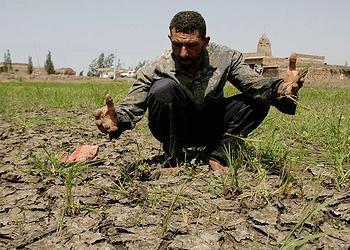 drought Egypt