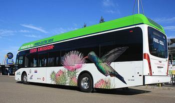zero emissions bus