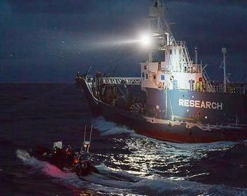 The Bob Barker's small boat launches defence during night attack from harpoon vessels, Feb. 23, 2014 (Photo by Simon Agar courtesy Sea Shepherd)